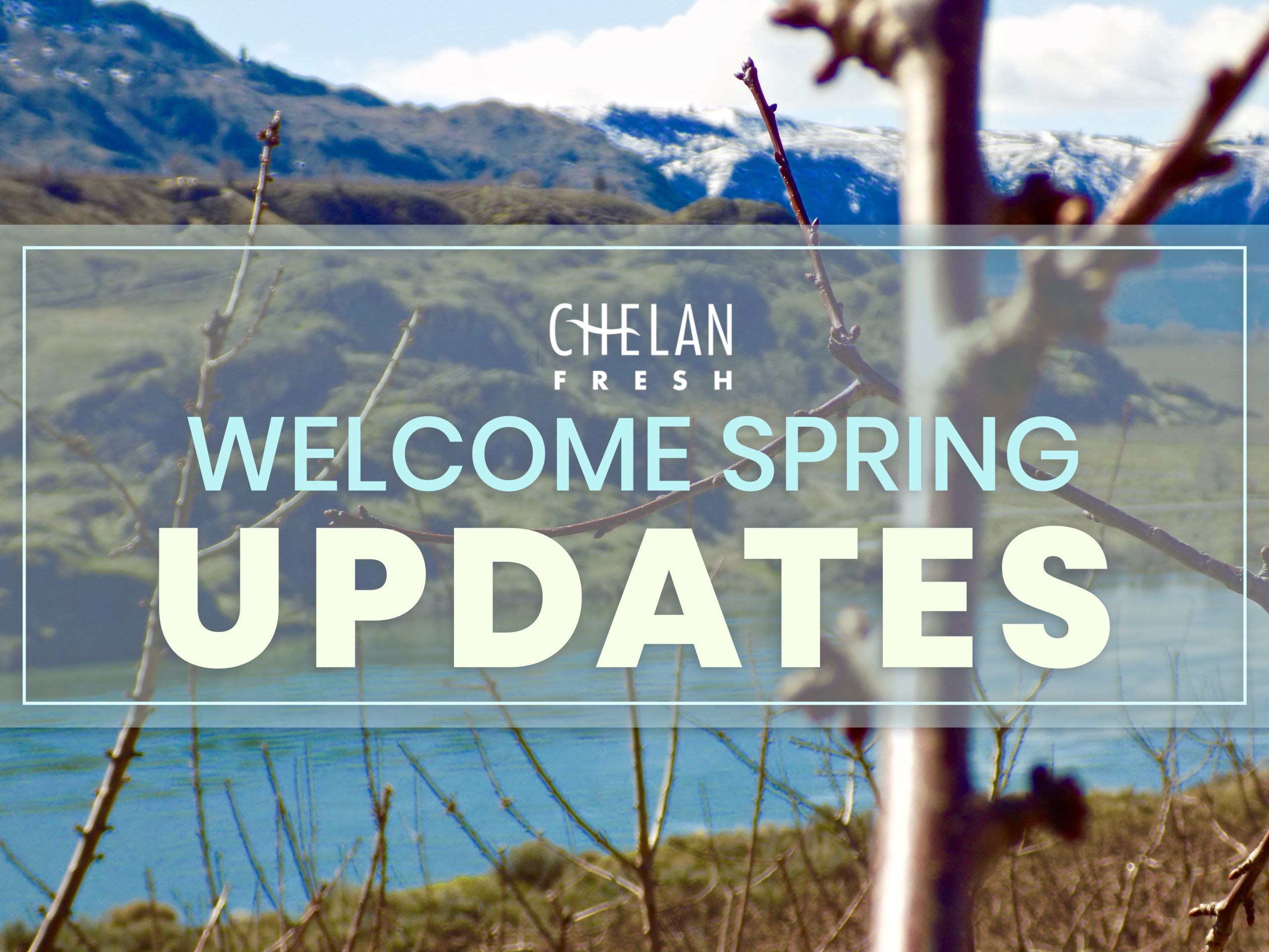 March Newsletter - Welcome Spring
