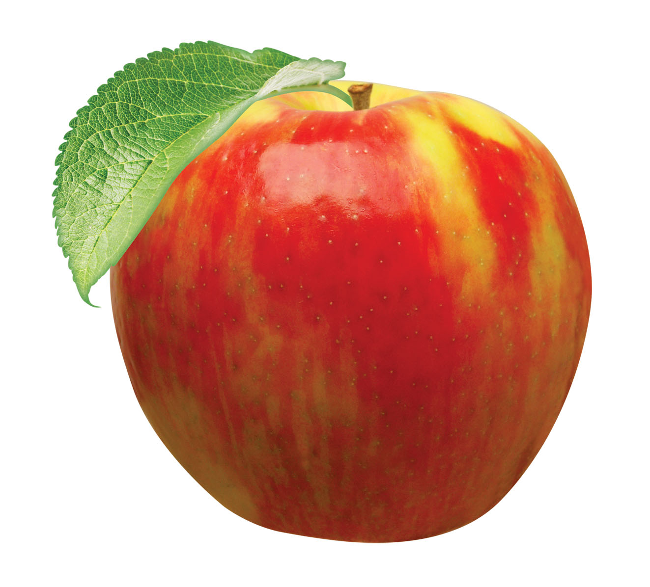 Honeycrisp apples by Chelan Fresh